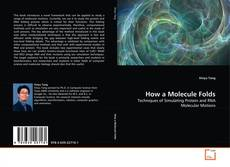 Capa do livro de How a Molecule Folds
