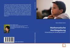 Buchcover von Mathematische Hochbegabung