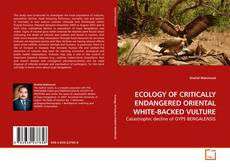 ECOLOGY OF CRITICALLY ENDANGERED ORIENTAL WHITE-BACKED VULTURE的封面