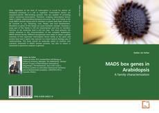 Copertina di MADS box genes in Arabidopsis