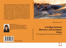 Bookcover of A bridge between Mercosur and European Union