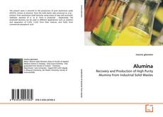 Bookcover of Alumina