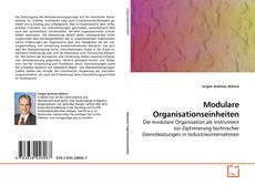 Bookcover of Modulare Organisationseinheiten