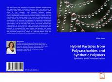 Bookcover of Hybrid Particles from Polysaccharides and Synthetic Polymers
