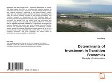 Copertina di Determinants of Investment in Transition Economies
