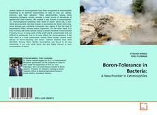 Boron-Tolerance in Bacteria: kitap kapağı