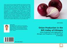 Bookcover of Onion Production in the Rift Valley of Ethiopia