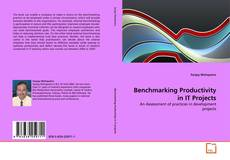 Bookcover of Benchmarking Productivity in IT Projects