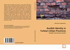 Bookcover of Kurdish Identity in Turkey's Urban Provinces