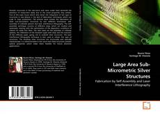 Bookcover of Large Area Sub-Micrometric Silver Structures