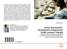 Bookcover of Caritas Kasanaensis' Development Programmes inside Luweero Triangle