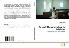 Capa do livro de Through Phenomenology to Solidarity