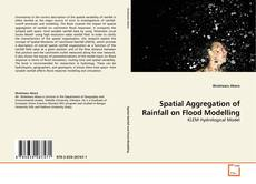Bookcover of Spatial Aggregation of Rainfall on Flood Modelling