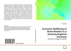 Bookcover of Economic Wellbeing of Hired Workers in a Growing Regional Economy