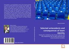 Bookcover of Selected antecedents and consequences of team identity