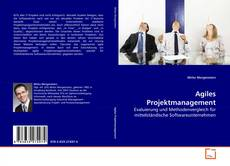 Bookcover of Agiles Projektmanagement