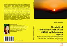 Bookcover of The right of selfdetermination in the UNDRIP with focus on Mexico
