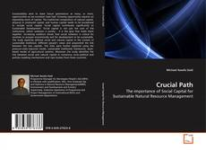 Bookcover of Crucial Path