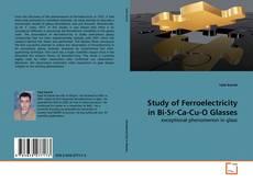 Bookcover of Study of Ferroelectricity in Bi-Sr-Ca-Cu-O Glasses