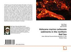 Bookcover of Holocene marine carbonate sediments in the northern Red Sea