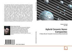 Hybrid Ceramic Nano-Composites:的封面