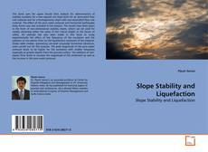 Bookcover of Slope Stability and Liquefaction