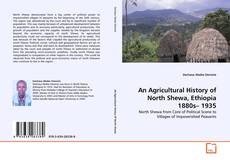 Bookcover of An Agricultural History of North Shewa, Ethiopia 1880s– 1935