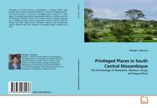 Bookcover of Privileged Places in South Central Mozambique
