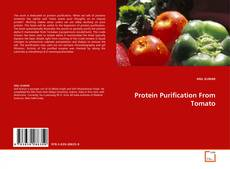 Обложка Protein Purification From Tomato