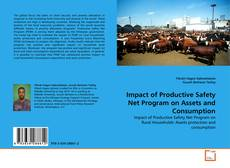 Bookcover of Impact of Productive Safety Net Program on Assets and Consumption