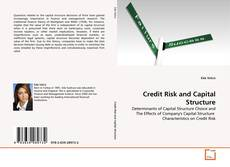 Bookcover of Credit Risk and Capital Structure