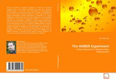 Bookcover of The AMBER Experiment