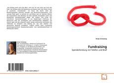 Fundraising kitap kapağı