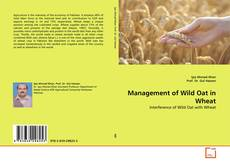 Portada del libro de Management of Wild Oat in Wheat