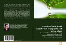 Bookcover of Photosynthetic water oxidation in high plants and micro algae
