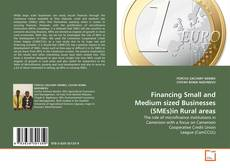 Financing Small and Medium sized Businesses (SMEs)in Rural areas的封面