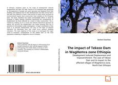 Bookcover of The impact of Tekeze Dam in WagHemra zone Ethiopia