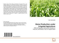 Maize Production under Irrigated Agriculture kitap kapağı