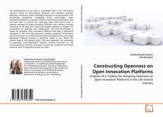 Buchcover von Constructing Openness on Open Innovation Platforms