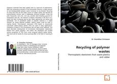 Bookcover of Recycling of polymer wastes
