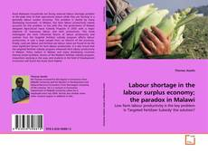 Обложка Labour shortage in the labour surplus economy; the paradox in Malawi