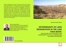 Bookcover of DETERMINANTS OF LAND DEGRADATION IN THE LAKE TANA BASIN: