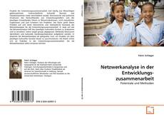 Netzwerkanalyse in der Entwicklungs- zusammenarbeit kitap kapağı