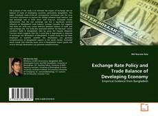 Обложка Exchange Rate Policy and Trade Balance of Developing Economy