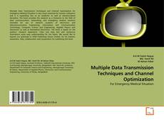 Bookcover of Multiple Data Transmission Techniques and Channel Optimization