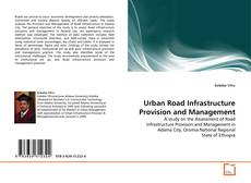 Urban Road Infrastructure Provision and Management的封面