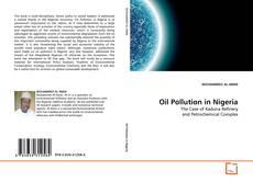 Copertina di Oil Pollution in Nigeria
