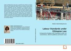 Bookcover of Labour Standards under Ethiopian Law
