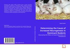 Determining the Cause of Increased Neurogenesis in Dominant Rodents kitap kapağı