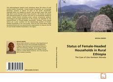 Couverture de Status of Female-Headed Households in Rural Ethiopia